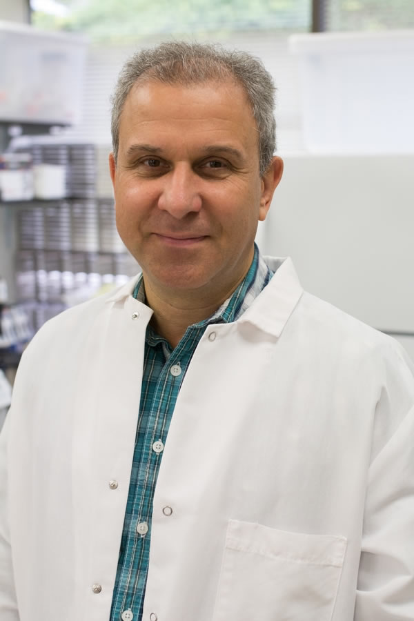 Hatice Karauzum, PhD